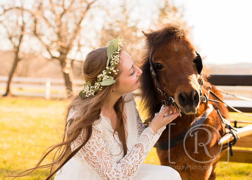 beautiful girl with pony