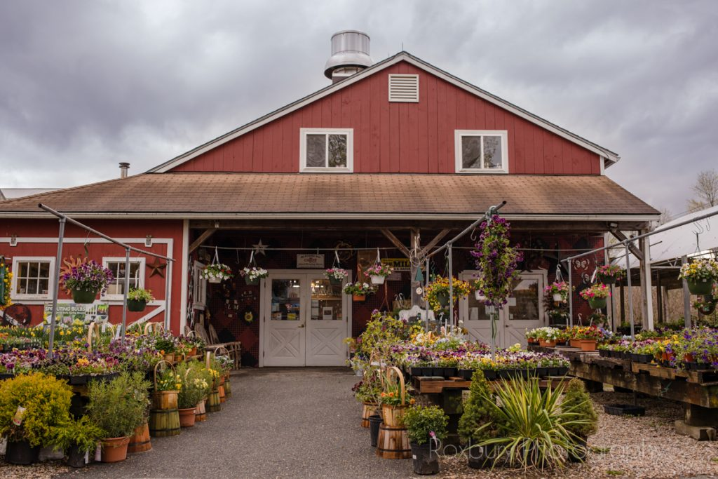 farm store connecticut small business family owned